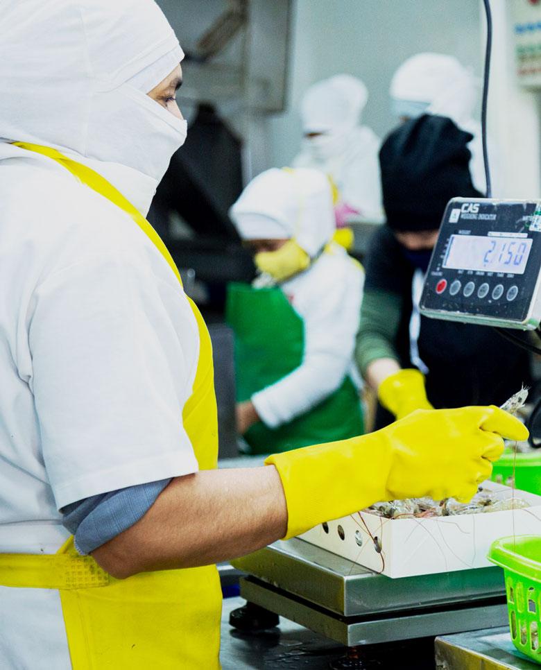 Mantenemos los procesos HACCP
